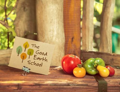 The Good Earth School – Logo Design